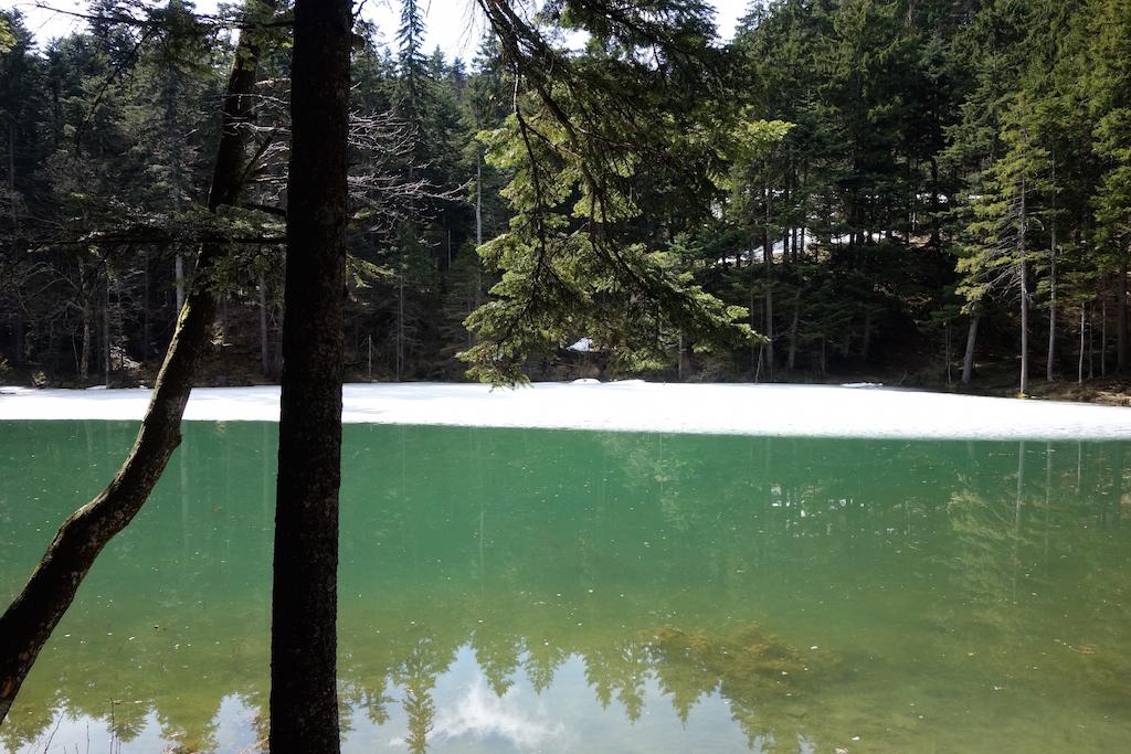 Frühling im Appenzell: Hoch zum romantischen Forstseeli