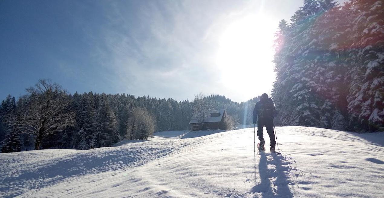 Schneeschuhwanderung hoch zur Marbachegg