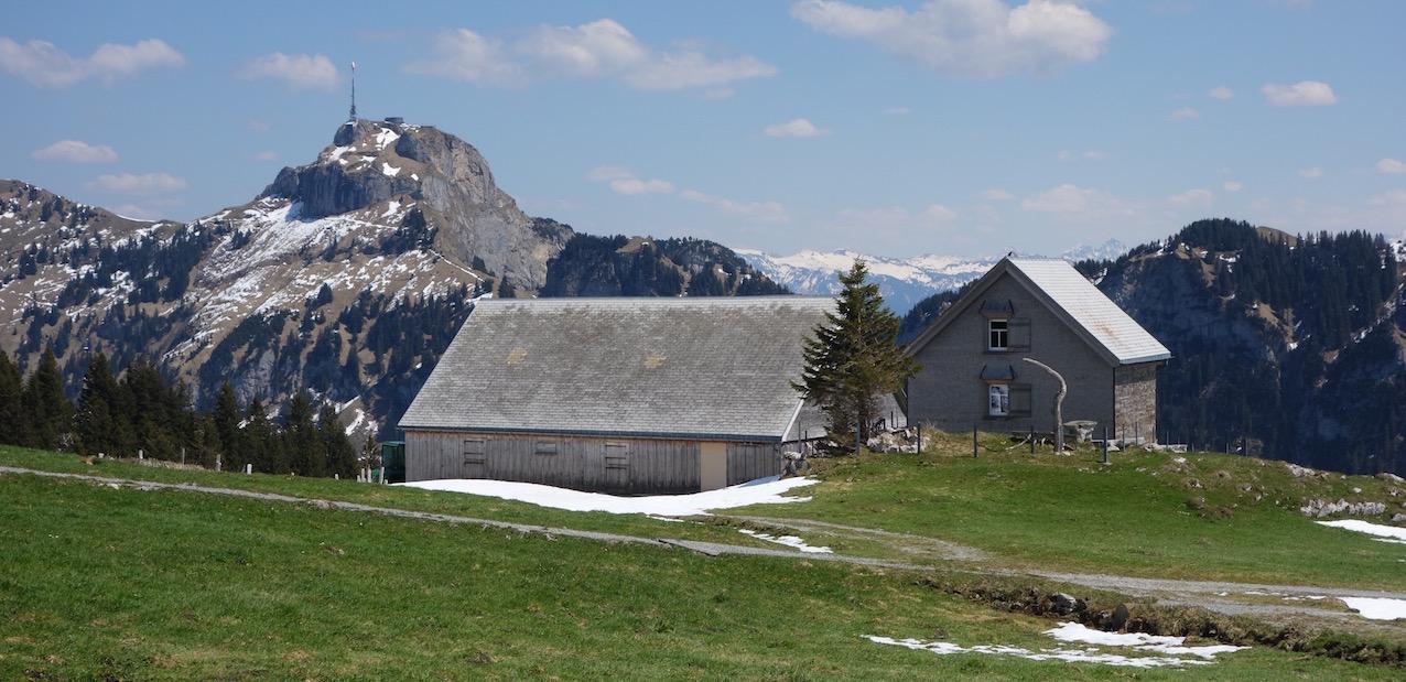 Von der Alp Sigel zum Seealpsee