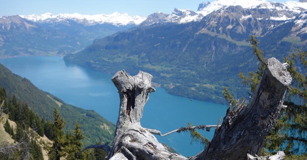 Von Interlaken via Harder Kulm auf den Wanniknubel